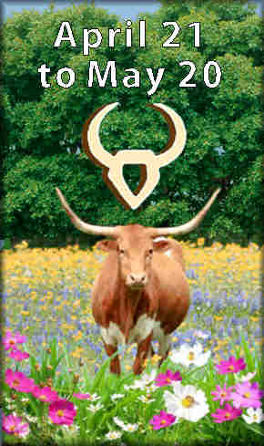 middle of spring season, Taurus